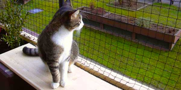 Home Safety Protection Net For Pets